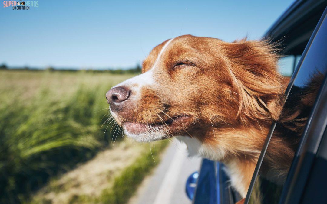 Atteindre le bonheur : les 3 grandes questions à se poser